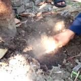 Warga Jombang Dihebohkan Fenomena Asap Berbau Busuk Keluar dari Tanah