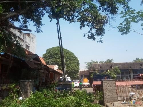 Petugas Disperkim saat melakukan perempesan dahan pohon tinggi menggunakan truk skylift. (Anggara Sudiongko/MalangTIMES)