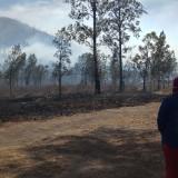 Empat Mahasiswa Terjebak Kebakaran Gunung Ranti