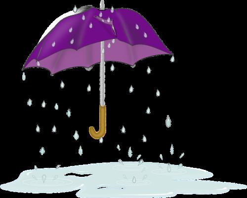 Jelang Musim Hujan, Titik Rawan Genangan di Kota Malang Masih Jadi Perhatian