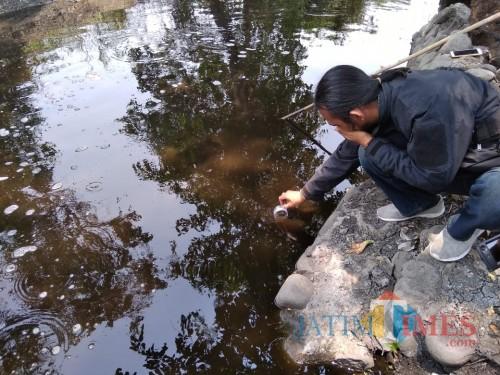 Aliran Sungai di Jombang Tercemar Limbah, Ikan hingga Tanaman Sawah Mati