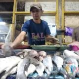 Stok Ikan Menipis, Harga Melonjak Tinggi, Faktor Cuaca Buruk?