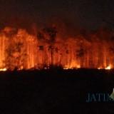 Waspada, Penghujung Bulan Ini Banyak Lahan di Kabupaten Malang Dilanda Kebakaran