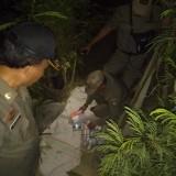 Prostitusi Seharga Rp 30 Ribu di Jombang Digrebek Satpol PP