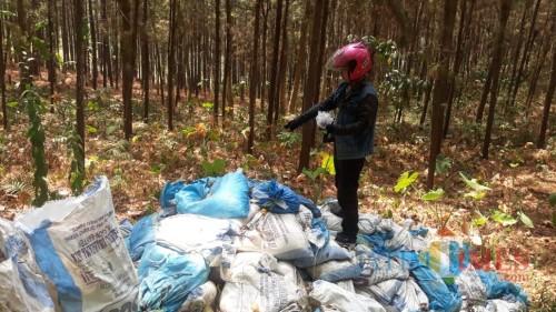 Timbunan limbah di hutan produksi Perhutani