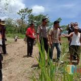 Tak Bersepakat, Lahan Gisik yang Jadi Sengketa antara Pakel dan Sambirobyong Berstatus Quo