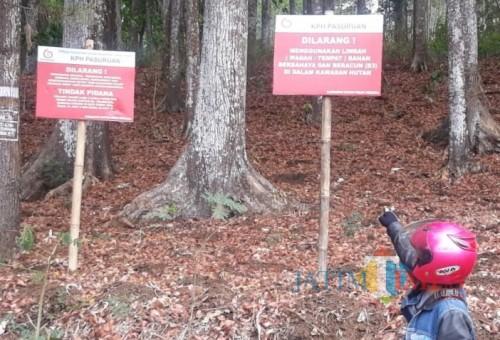 Papan larangan pembuangan limbah di lahan Perhutani.