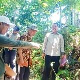 BPN Banyuwangi Realisasikan Pengukuran Tanah Milik Warga Licin