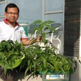 Teknologi OHOP, Wujudkan Mimpi Tanam Sayur dan Ternak Ikan di Lahan Rumah Sempit