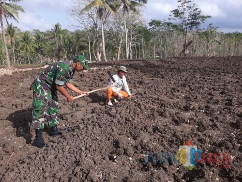 Serka Sudarto membantu petani bercocok tanam