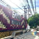 Percantik Jalan Utama, 17 Titik Ditanami Vertical Garden Habiskan Dana Rp 1,5 Miliar