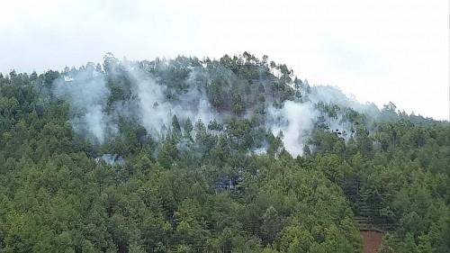 Kebakaran diPetak 10B dan Hutan Produksi Dusun Brau, Desa Gunungsari, Kecamatan Bumiaji, Kota Batu,Rabu (13/11/2019). (Foto: istimewa)