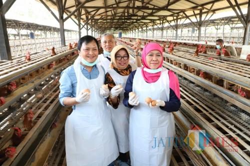 Gubernur Khofifah Imbau Masyarakat Tak Perlu Cemas Konsumsi Telur