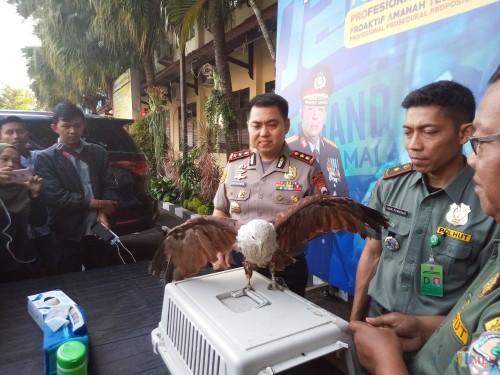 Kapolres Malang Kota AKBP Dony Alexander bersama BKSDA saat menunjukkan elang yang diamankan dari pelaku NR.