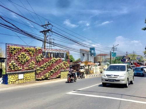 Salah satu vertical garden di Jalan Patimura. (Foto: Irsya Richa/MalangTIMES)