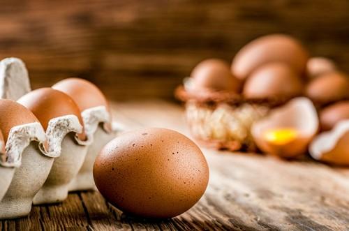 Ilustrasi telur ayam. (Foto: istimewa)