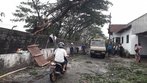 Kondisi bangunan dan rumah warga yang rusak akibat diterjang angin kencang yang juga mengakibatkan pohon tumbang (Foto : Istmewa)