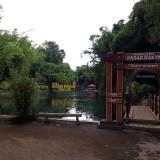 Miliki 72 Jenis Bambu, Ekowisata Boon Pring Raup Miliaran Rupiah