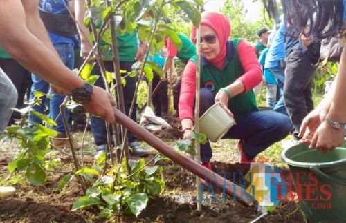 Wali Kota Batu Dewanti Rumpoko saat menanam pohon di area Coban Talun, Desa Tulungrejo, Kecamatan Bumiaji, beberapa saat lalu. (Foto: Irsya Richa/MalangTIMES)