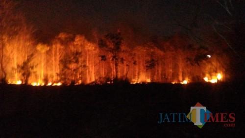 Ilustrasi kebakaran (dok. MalangTIMES)