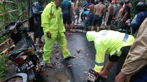 Petugas kepolisian beserta warga saat mengevakuasi jenasah korban yang meninggal akibat tertimpa pohon tumbang (Foto : Istimewa)