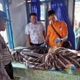Remaja di Blitar Tewas Kesetrum Kabel 'Olor'