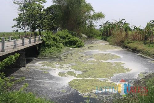 Dua Pabrik di Jombang Terdeteksi Cemari Sungai, Sanksi Administrasi dan Pidana Menanti