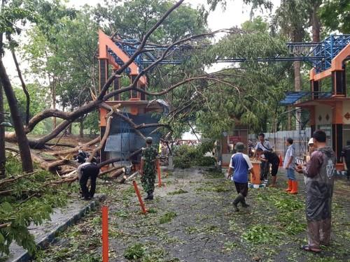 Kondisi bangunan portal Bendungan Lahor yang rusak parah akibat tertimpa pohon tumbang saat diterjang musibah angin kencang (Foto : Istimewa)