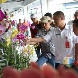 Angkat Potensi Hotilkultura, Dipertabun Gelar Horti Expo