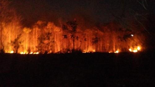 Petugas pemadam kebakaan saat berupaya memadamkan api (Foto : Dokumen MalangTIMES)