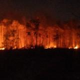 Minim Personel Pemadam, Penanganan Kebakaran Kabupaten Malang Tak Maksimal