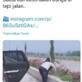 Viral Aksi Cabut Bunga di Median Tol Malang-Pandaan, Pelaku Terancam Hukuman?
