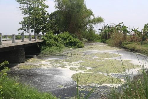 Gakkum KHLK Didesak Berikan Sanksi Pidana ke Dua Pabrik Pelaku Pencemaran di Jombang