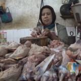 Penjualan Daging Ayam Meningkat, Harga Relatif Normal
