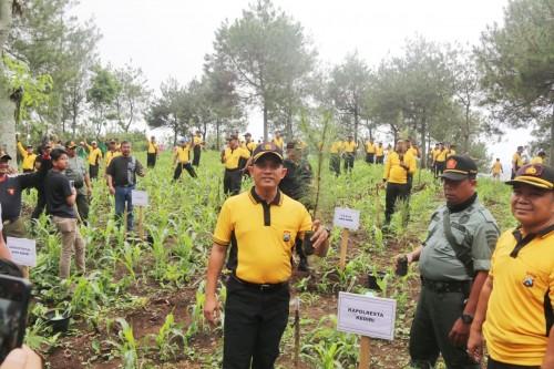 Kapolresta Kediri AKBP Miko Indrayana menanam pohon pinus. (eko Arif s /JatimTimes)