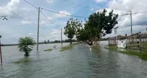 Terlihat jalan desa dan lahan pertanian di Kecamatan Ploso Jombang terendam banjir. (Istimewa)