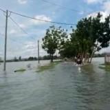 Luapan Sungai Marmoyo Rendam Lima Desa di Jombang