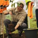 500 Bibit Pohon Ditanam di Area Lereng Gunung Panderman, Kota Batu Siaga Darurat Bencana