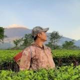 Angkat Lagi Kejayaan Kebun Teh Wonosari, DPRD Beri Catatan Penting
