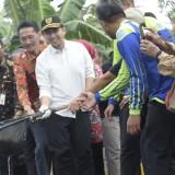 Wakil Gubernur Jatim Jenguk Trenggalek, Nego Perhutani untuk  Tambak Udang