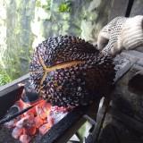 Nikmatnya Durian Bakar Wonosalam, Kuliner Primadona Khas Jombang