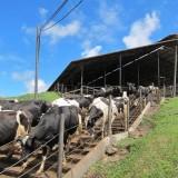 Tiga Tahun Teliti Kabupaten Malang, Berikut Rekomendasi IPB ke Pemkab Malang