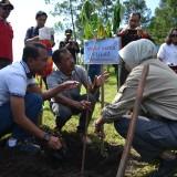 Gantikan Pohon yang Terbakar di Panderman, Pemkot bersama KPH Malang Tanam 3 Ribu Bibit