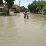 Ratusan Warga Terdampak Banjir di Jombang Terancam Berbagai Penyakit