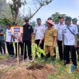 Lestarikan Kawasan Pantai Bukit Indah, Pemkab Blitar Lakukan Penghijauan