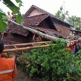 Diamuk Angin Kencang, 51 Rumah Warga Roboh Sebabkan Kerugian Hingga Ratusan Juta