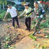 Jatuh Tertimpa Ranting Pohon, Anggota TNI Kritis