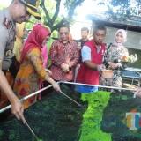Kunjungi Blitar, Putri Wapres RI Terkagum-Kagum Batik Ciprat Buatan Disabilitas