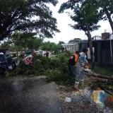 Diterjang Angin Kencang, Markas Koramil Wagir dan Rumah Warga Rusak