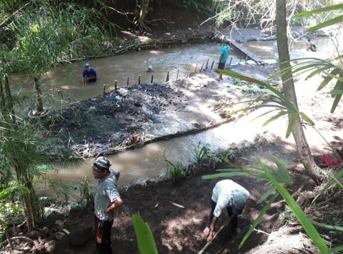 Anggota Kaliku (Kelompok Aktivis Lingkungan dan Kelestarian Budaya) sedang membuat pulau buatan kecil yang ada di tengah sungai. (Foto: Tubagus Achmad/MalangTimes)